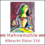 Albrecht_Duerer_210_1.jpg
